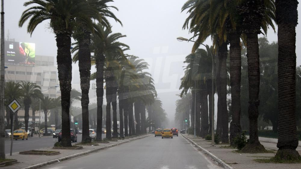 Un épais brouillard couvre les routes de la capitale