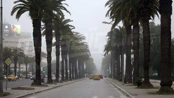 ضباب كثيف يغطي طرقات العاصمة وشوارعها