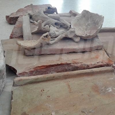 Saisie de pierres archéologiques et d'un crâne à Sebiba