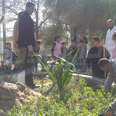 Sidi Bouzid: plantation de plus de 600 arbres à l'école Al Zayatine