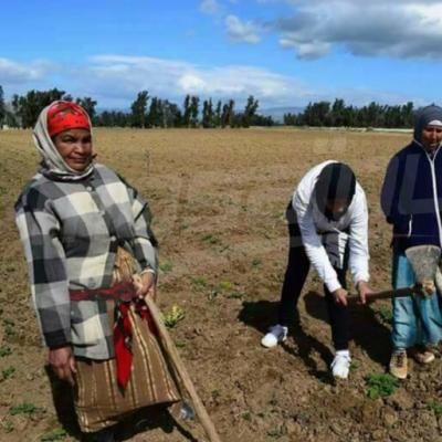 A l'occasion de la fête de la femme : une visite de soutien aux travailleuses en zones rurales