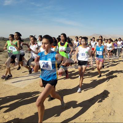 La finale nationale du championnat de Tunisie et de la coupe de la fédération du marathon