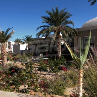 L'hôtel de Qatari Diar de Tozeur, sera l'un des meilleurs au monde