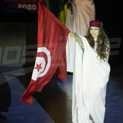 افتتاح الدورة 24 لبطولة أمم افريقيا لكرة اليد بتونس