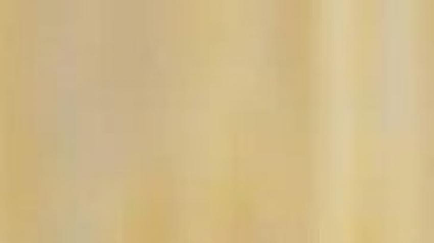 وفاة شوقي الماجري:عائلته توجه نداء للسفارة التونسية في مصر
