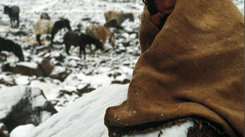 عين دراهم-جندوبة : وفاة طفلة الـ9 سنوات بسبب البرد والفقر!