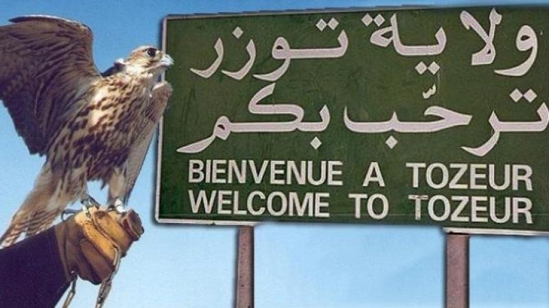 توزر : عقارات دولية على ذمة وزارة السياحة لإقامة مشاريع ودفع الاستثمار