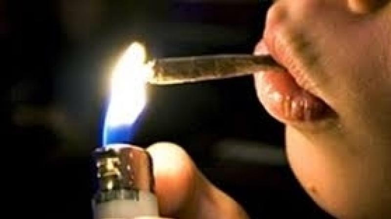 منظمات تراسل المجلس : على تونس تعديل مشروع قانون المخدرات