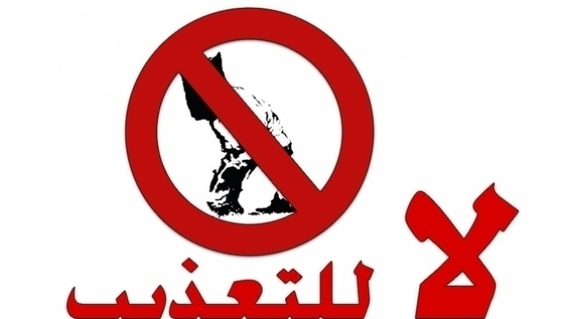 منظمة مناهضة التعذيب : تواصل الانتهاكات رغم القوانين والتشريعات