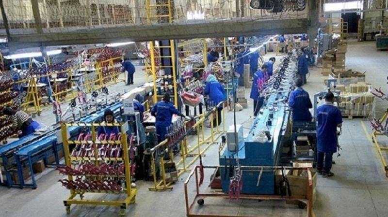 مصنع الكابل