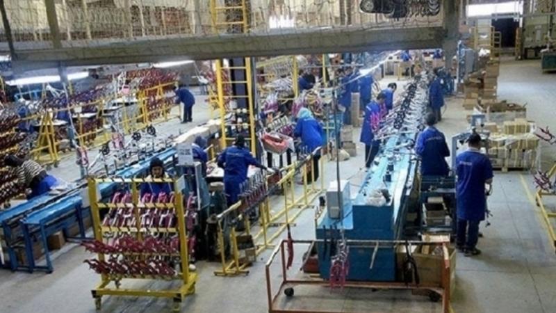 مصنع - كوابل