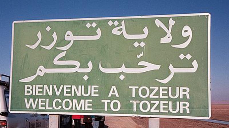 كورشيد :إمكانية منح المقاسم الفلاحية البيضاء بتوزر لأصحاب الشهائد