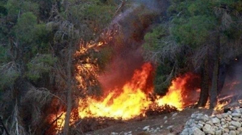 الكاف : اندلاع حريق بجبل الزعافرية