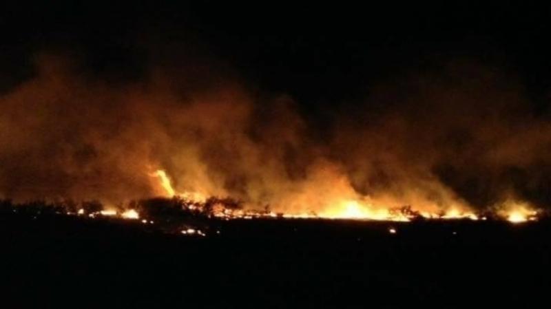 السيطرة على اربعة حرائق بجبال ورغة والقصور من ولاية الكاف
