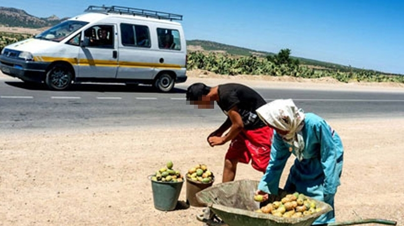 كان يبيع الهندي على حافة الطريق: وفاة طفل في حادث مرور