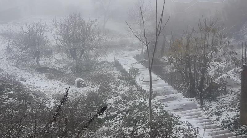 تساقطالثلوج