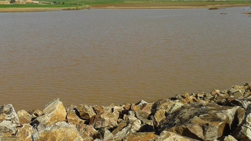 بورويس: انطلاق اشغال بناء سدين تليين بكلفة 7 مليون دينار