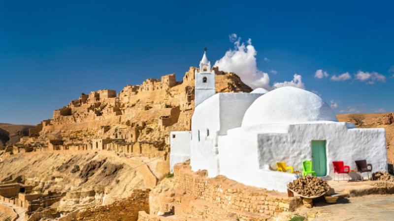 وزيرة السياحة : تسجيل مؤشرات إيجابية في القطاع السياحي