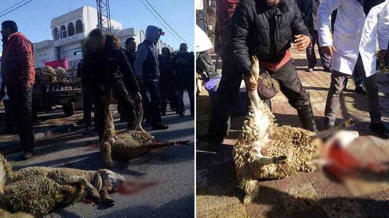 قصابو فريانة يذبحون خرفانهم امام مقر المعتمدية