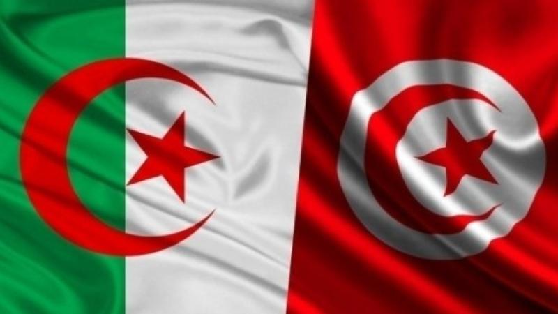 تونس / الجزائر
