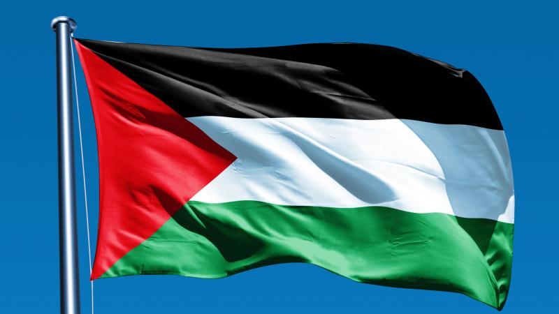 وقفة احتجاجية للقضاة أمام قصر العدالة نصرة للقضية الفلسطينية