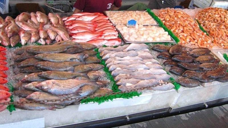 تطوّر صادرات منتوجات الصيد البحري