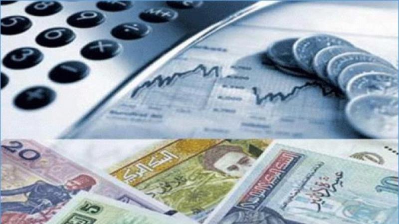 سمير سعيد : تدعيم الأسس المالية للبنوك سيساعدها على استخلاص ديونها