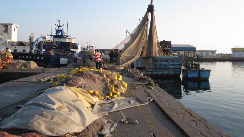 عنف وجرحى في وقفة إحتجاجية لبحارة الشابة ضد ''الصيد العشوائي''