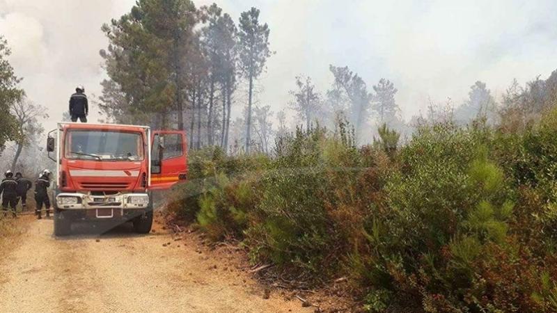 الحماية تسيطر على 91 حريقا في يوم واحد