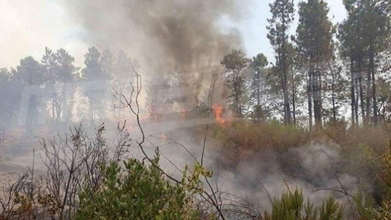 الكريب : اندلاع حريق بجبل ''المرقب''