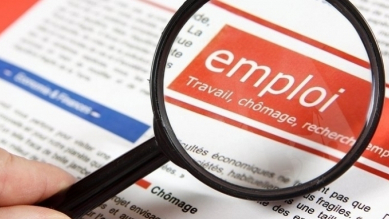 شروط وإجراءات الحصول على عقارات فلاحية لفائدة العاطلين عن العمل