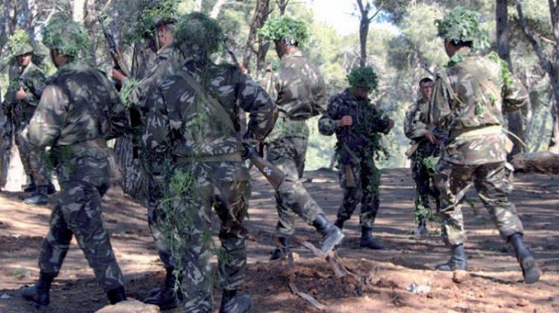 الجيش الجزائري يعتقل إرهابيين خطيرين وعنصري دعم