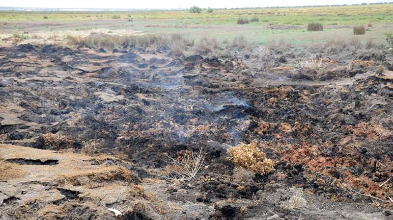تواصل تصاعد الدخان من باطن الأرض: تشكيل لجنة لمتابعة الوضع في القيروان