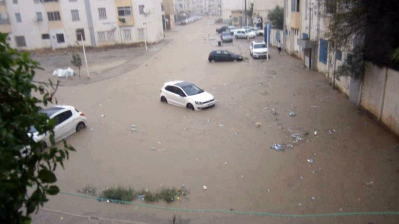 أمطار طوفانية في الجزائر تتسبب في فيضان عديد الأودية بالمناطق الحدودية
