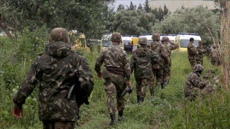 إرهابيون يسلمون أنفسهم للجيش الجزائري