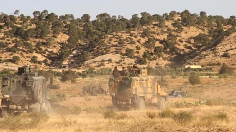 تقارير استخباراتية تحذر من اندماج عناصر إرهابية تونسية وجزائرية