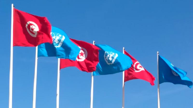 الأمم المتحدة ترحب بالمبادرة في مجال المساواة في الميراث في تونس