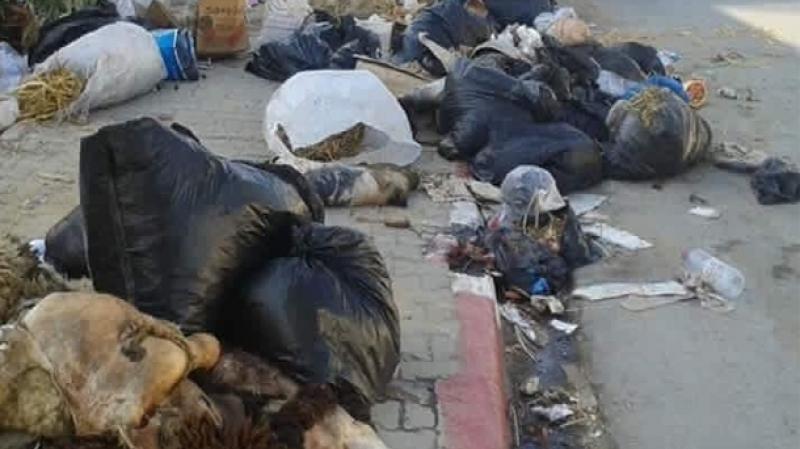 وزارة الصحة تدعو إلى عدم إلقاء فضلات عيد الأضحى بطريقة عشوائية