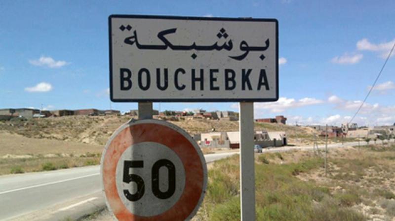 معبر بوشبكة الحدودي: 600 ألف مسافر جلّهم من الجزائريين
