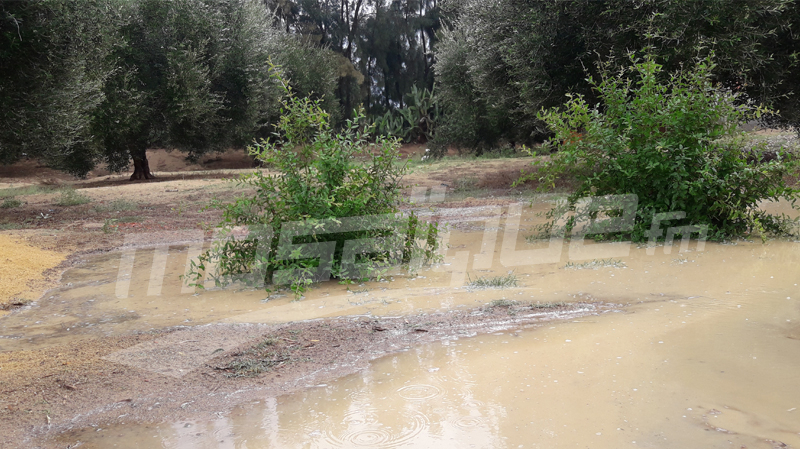 القيروان: نزول أمطار هامة مرفوقة بالبرد تتسبب في عزلة عدد من المناطق