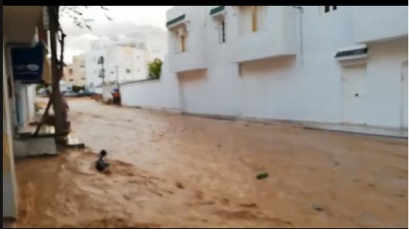 نفوق عدد من الأضاحي بسبب الأمطار في نابل والسلطات تتدخل..