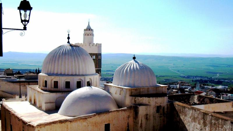لرفع فضلات العيد : حملة نظافة واسعة في مدينة الكاف