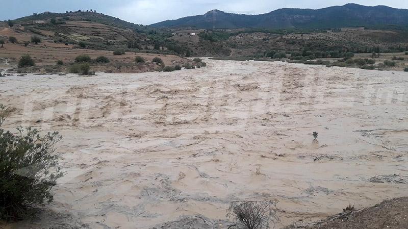 أتى على مساحات من الحقول: فيضان وادي سليانة بسبب الأمطار الغزيرة