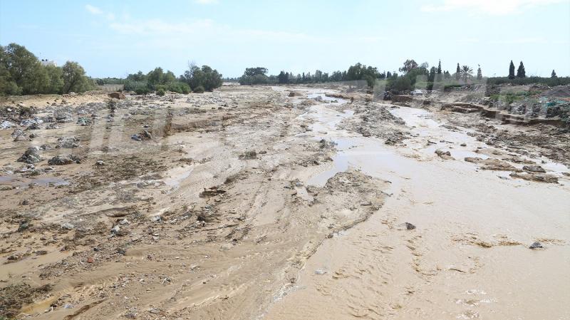 وزير الفلاحة : تسخير 19 فريقا لجرد الأضرار الفلاحية بنابل