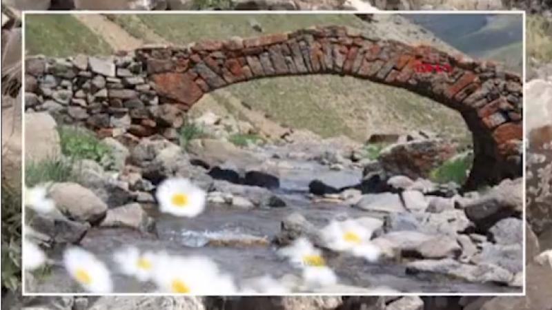 سرقة جسر تاريخي عمره 300 سنة!