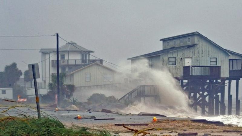 اعصار مايكل