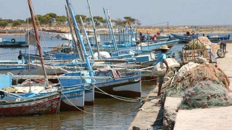 تسليم حوالي 400 رخصة صيد لأصحاب مراكب في قرقنة