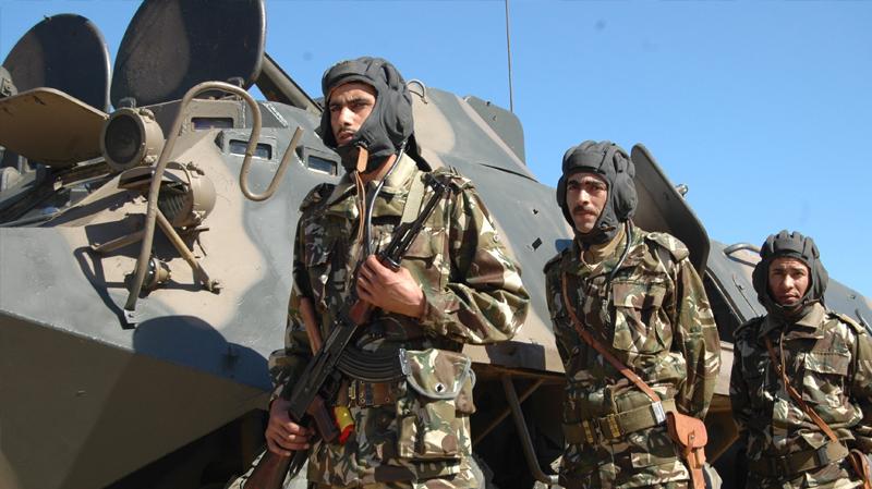 الجزائر: تفكيك شبكة لتهريب الأسلحة إلى تونس