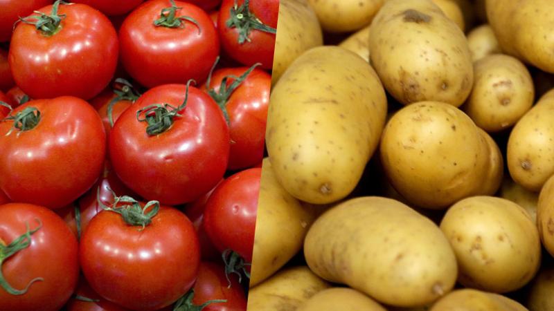 نابل: حجز 1.5 طن من الخضر إثر حملة مراقبة اقتصادية