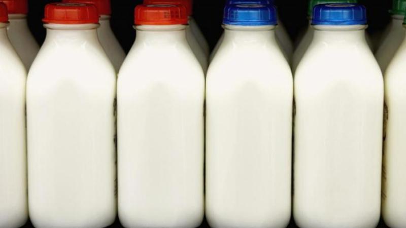 ارتفاع المخزون الوطني من الحليب